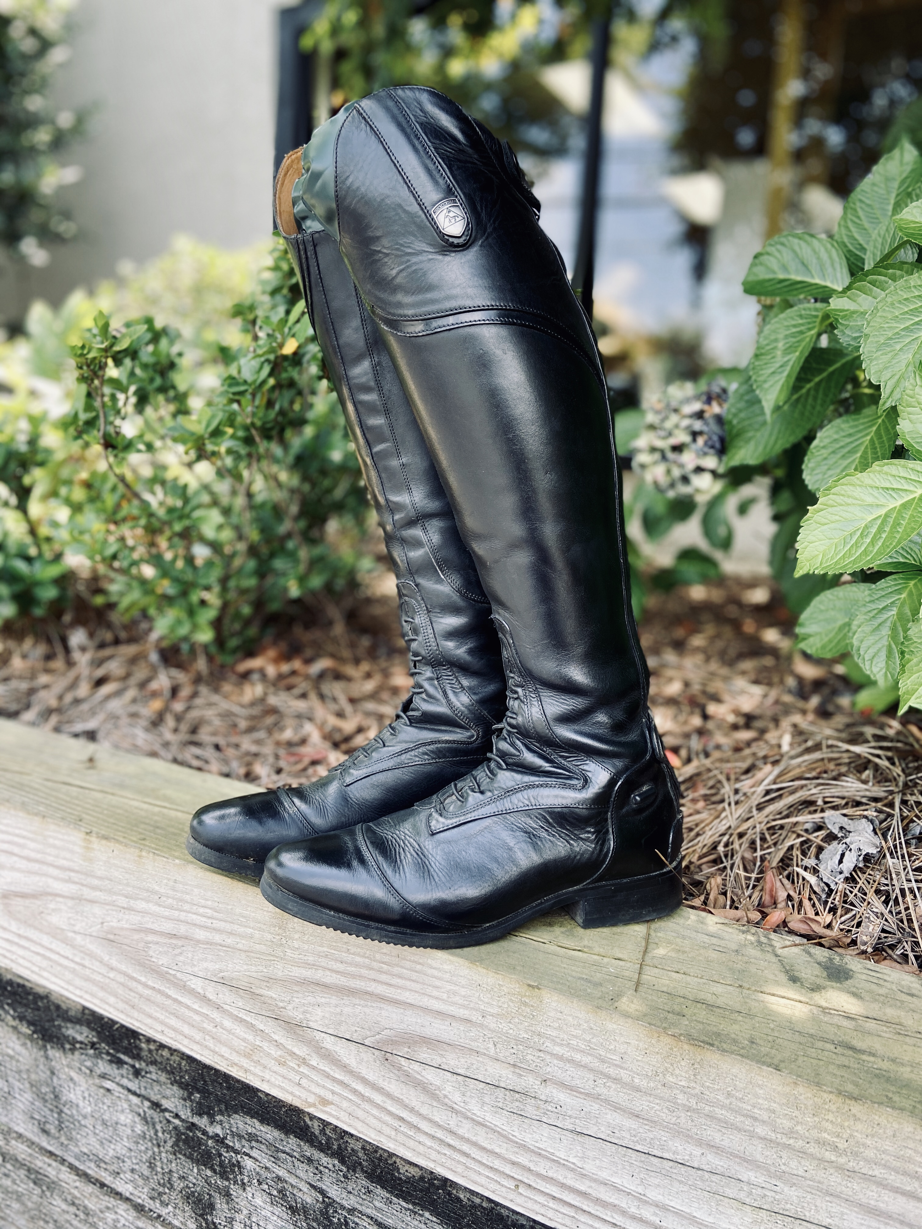 Mountain Horse Sovereign Field Boots freshly cleaned and polished